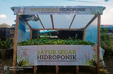 Kebun Sayur Segar Hidroponik Karya Santri Pesantren Al Hilal 1